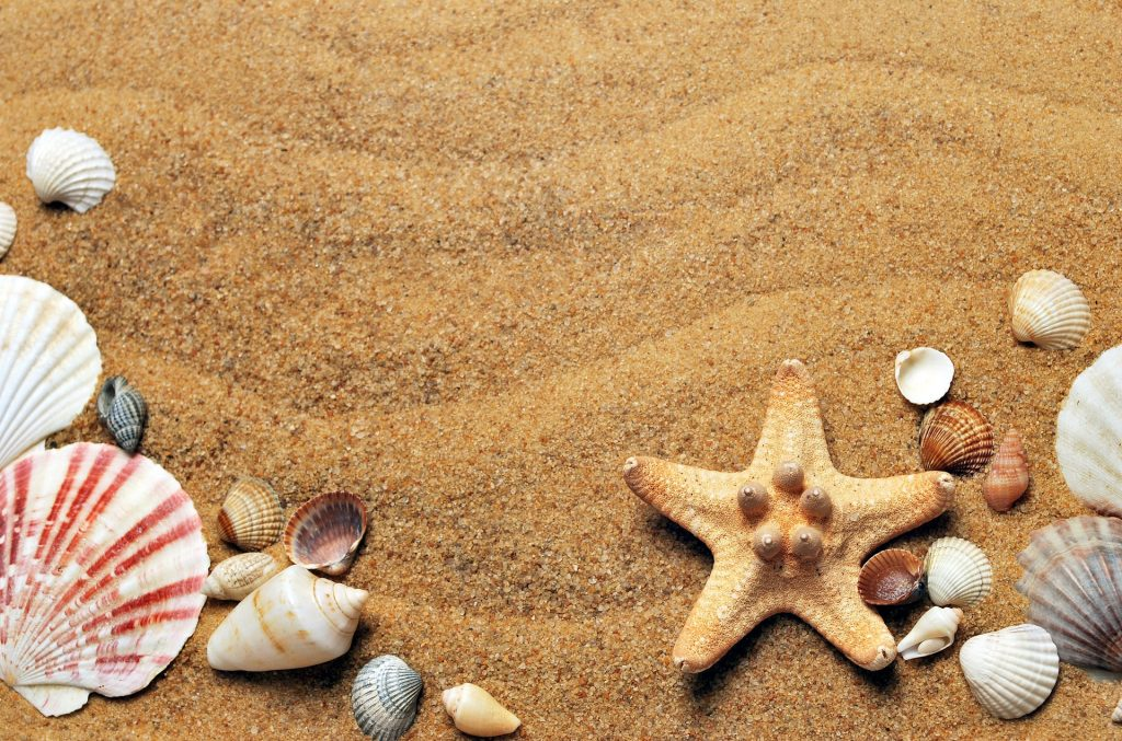 Más del 90% de la arena es cuarzo